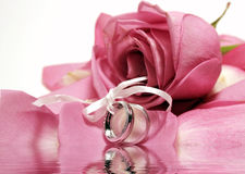 Rings and Roses Reflection Stock Photos
