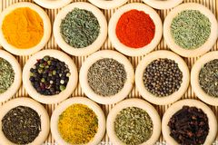 Rings with spices Royalty Free Stock Images