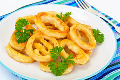 Rings of Squid Fried, Grilled. Studio Photo Stock Photos