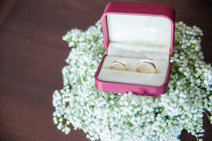 Rings Royalty Free Stock Photos