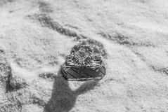 With These Rings Royalty Free Stock Images