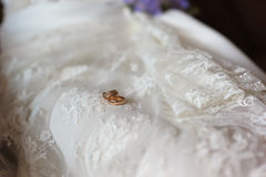 Rings on the wedding dress Stock Image