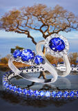 Rings whis Tanzanite Stock Images