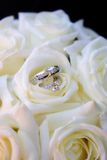 Rings in white roses. A bridal set of rings in a bouqet of white roses Royalty Free Stock Photo