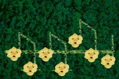 Ringtone μουσικής Στοκ εικόνες με δικαίωμα ελεύθερης χρήσης