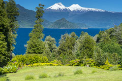 Rinihue lake and Mocho-Choshuenco national reserve as background, Chile Stock Images