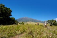 Rinjani mount hiker Stock Photos