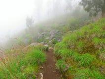 Rinjanitrekking Mist op de vulkaan Rinjani Indonesië Ruimte voor tekst atmosferisch Stock Foto's
