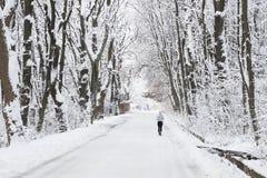 Rinnande folk Utomhus- aktiviteter för vinter Royaltyfria Foton