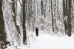 Rinnande folk Utomhus- aktiviteter för vinter Royaltyfri Bild