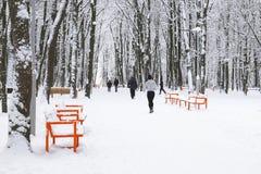 Rinnande folk Utomhus- aktiviteter för vinter Royaltyfri Fotografi