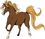 Rinnande häst Färgad häst stock illustrationer