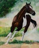 Rinnande hästmålning Royaltyfri Bild