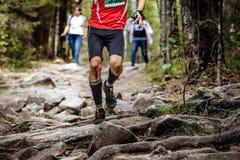 Rinnande ledaremaratonlöpare i trän Royaltyfria Foton
