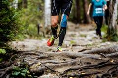 Rinnande maratonlöpare i skog Royaltyfria Bilder