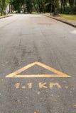 Rinnande spår i parkera Royaltyfri Fotografi