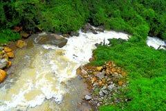 Rinnande ström med skummande vatten, stenar och för naturlandskap för grönska lite varstans - illustrationen Royaltyfria Bilder