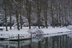 Rinnande thrugh för vatten parkera Arkivfoto