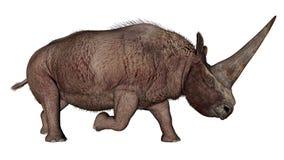 Rinoceronte do dinossauro de Elasmotherium - 3D rendem Fotos de Stock