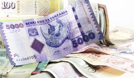 Rinoceronte em Blanknote Foto de Stock Royalty Free