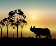 Rinoceronte no nascer do sol ilustração do vetor