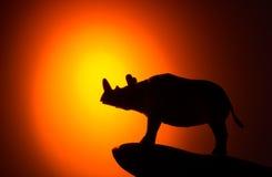 Rinoceronte sul fondo di tramonto Fotografia Stock Libera da Diritti