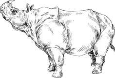 Rinoceronte sveglio disegnato a mano Immagini Stock Libere da Diritti