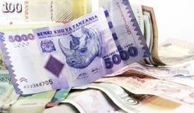 Rinoceros in Blanknote Royalty-vrije Stock Foto