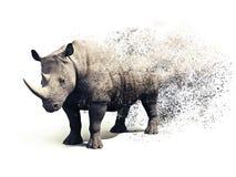 Rinoceros op een witte achtergrond met een verspreidings abstract effect Stock Foto