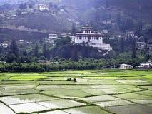 Rinpung Dzong και τομείς ρυζιού, Paro, Μπουτάν Στοκ Φωτογραφία