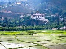 Rinpung Dzong and rice fields, Paro, Bhutan. Rinpung Dzong fortress-monastery and rice fields, Paro, Bhutan Stock Photo