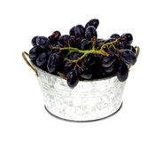 Rinsed Black Grapes Stock Images