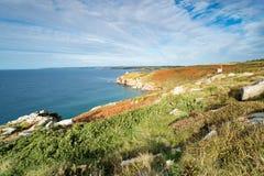 Rinsey huvud i Cornwall Royaltyfri Foto