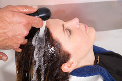Rinsing hair. Hair stylist rinsing female customer hair after washing Royalty Free Stock Photo