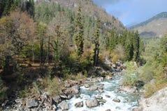 Rio áspero da montanha Imagem de Stock