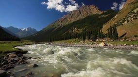Rio áspero nas montanhas kyrgyzstan vídeos de arquivo