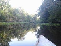 rio Royaltyfri Bild