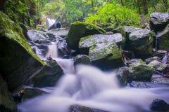 Rio abaixo de Curtis Falls Fotos de Stock Royalty Free