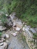 Rio abajo foto de archivo libre de regalías