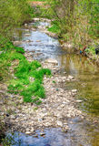 Rio abajo una pequeña corriente pacífica con Rocky Bank Foto de archivo libre de regalías