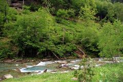 Rio alpino no parque nacional de Ordesa em Aragon, Espanha imagem de stock