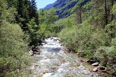 Rio alpino no parque nacional de Ordesa em Aragon, Espanha fotografia de stock