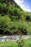 Rio alpino no parque nacional de Ordesa em Aragon, Espanha fotos de stock royalty free