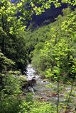 Rio alpino no parque nacional de Ordesa em Aragon, Espanha imagens de stock royalty free