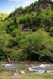 Rio alpino no parque nacional de Ordesa em Aragon, Espanha fotografia de stock royalty free