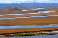 Rio amarelo Fotografia de Stock