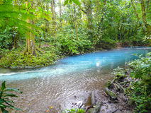 Rio Azul Arkivbilder