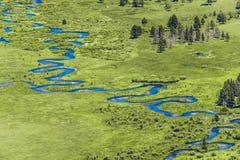 Rio azul através dos pantanais da grama foto de stock royalty free