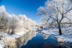 Rio azul da geada das árvores Imagens de Stock Royalty Free