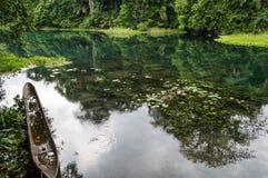 Rio azul/rio de Tulu/rio de Niari, Congo foto de stock